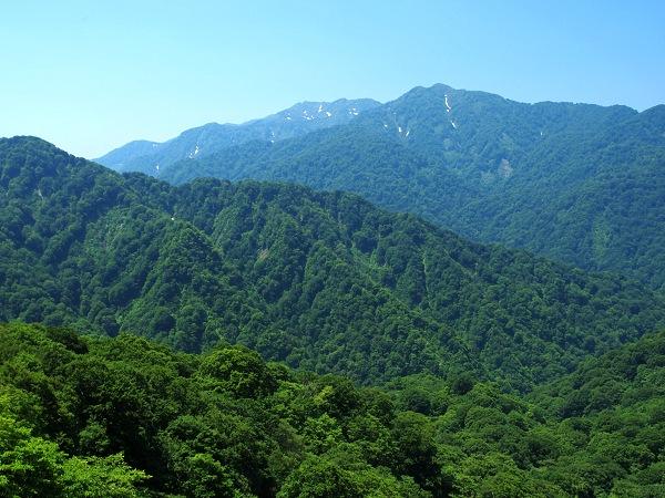 白神山地の画像 p1_9